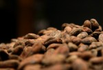 New Study Tests Health Benefits Of Chocolate's Cocoa Flavanols In Pill Form