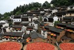 China Opens First Cultural Festival For Autumn Harvests In Jiangxi