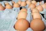 Organic Chicken Farms Cited For Overcrowding