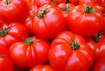 Lycopene in Tomatoes Have Been Found to Curb the Effects of Radiation